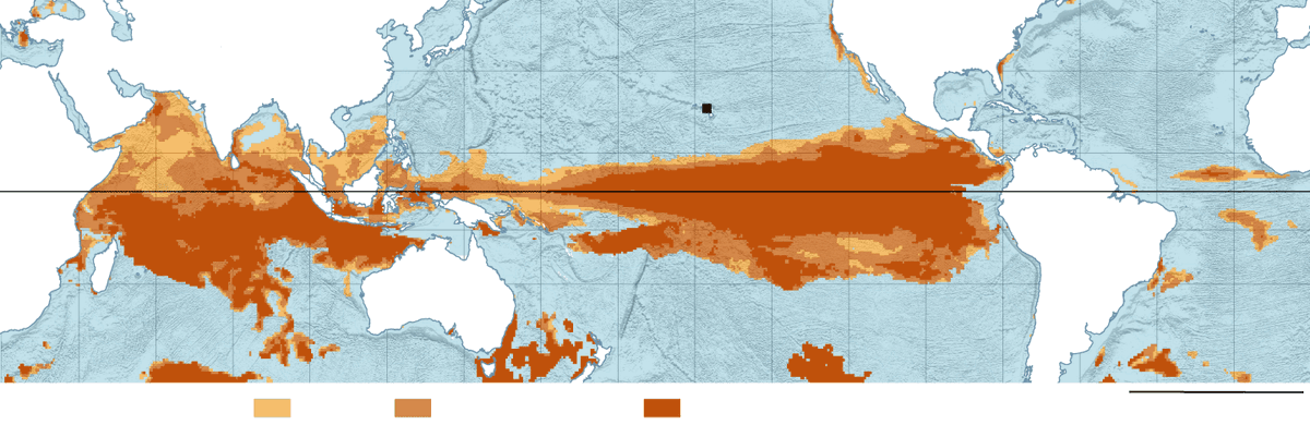 Underwater heatwave, +4˚, killing coral around the world. https://t.co/BC3kvsJX09 Half of Great Barrier Reef dead? https://t.co/YQlyKxiZlb