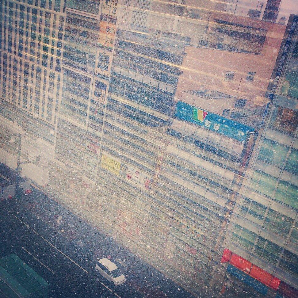 桜、、、ではなく、、、雪です。 #4月  #札幌  #本気で降ってる  #まだ冬 https://t.co/zcgaiAASMr