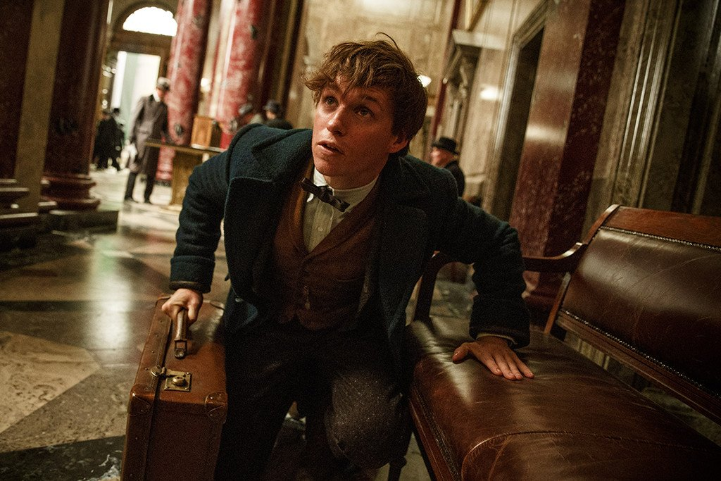 J.K. Rowling explains the connection between Albus Dumbledore and Newt Scamander: