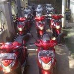 ►Keliling Malang naik motor yuk. https://t.co/9i93SunzuB ✆082230149593 PIN:2767CAD7. @Rentalmotor_MLG https://t.co/yofiQuSfRy