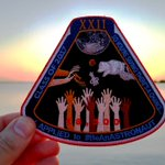 Grab your #BeAnASTRONAUT patch before it's too late! Available until APR 30. Proceeds to YN! https://t.co/8HIjwgDeK0 https://t.co/AGJDsRASHZ