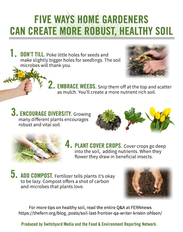 5 ways to create healthier soil in your garden for Soil your pants