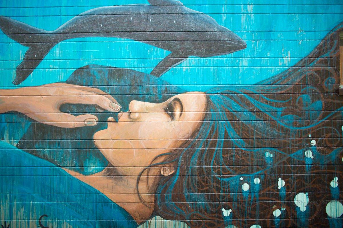 #Gainesville FL Public Murals Recreate A City #streetart #graffiti https://t.co/apfg8srpm2 https://t.co/EjSUrPcWb4