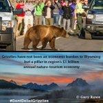 .@GovMattMead Hunting grizzly on border of Yellowstone, Grand Teton threaten tourism economy #DontDelistGrizzlies https://t.co/pE8ejfOUkc