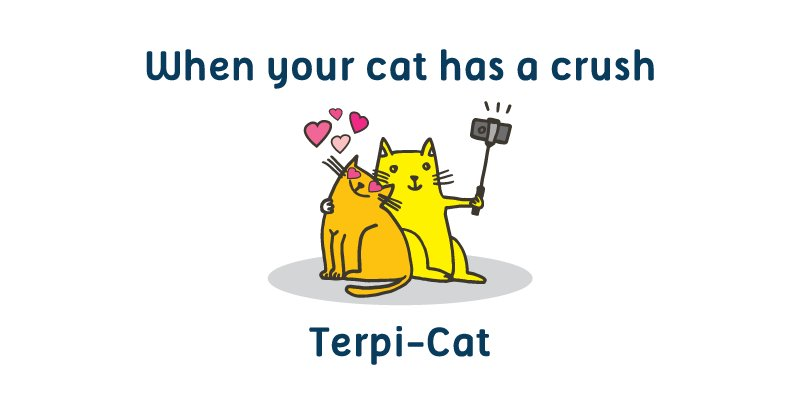 It'll be a cat-tastrophe if these puns aren't shared! RT to spread the #DigiFun! https://t.co/114IYEeQ5Y