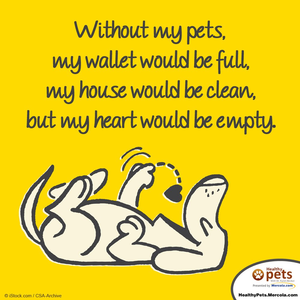 Without my pets, my wallet would be full, my house would be clean, but my heart would be empty. https://t.co/f42rFtwdqi