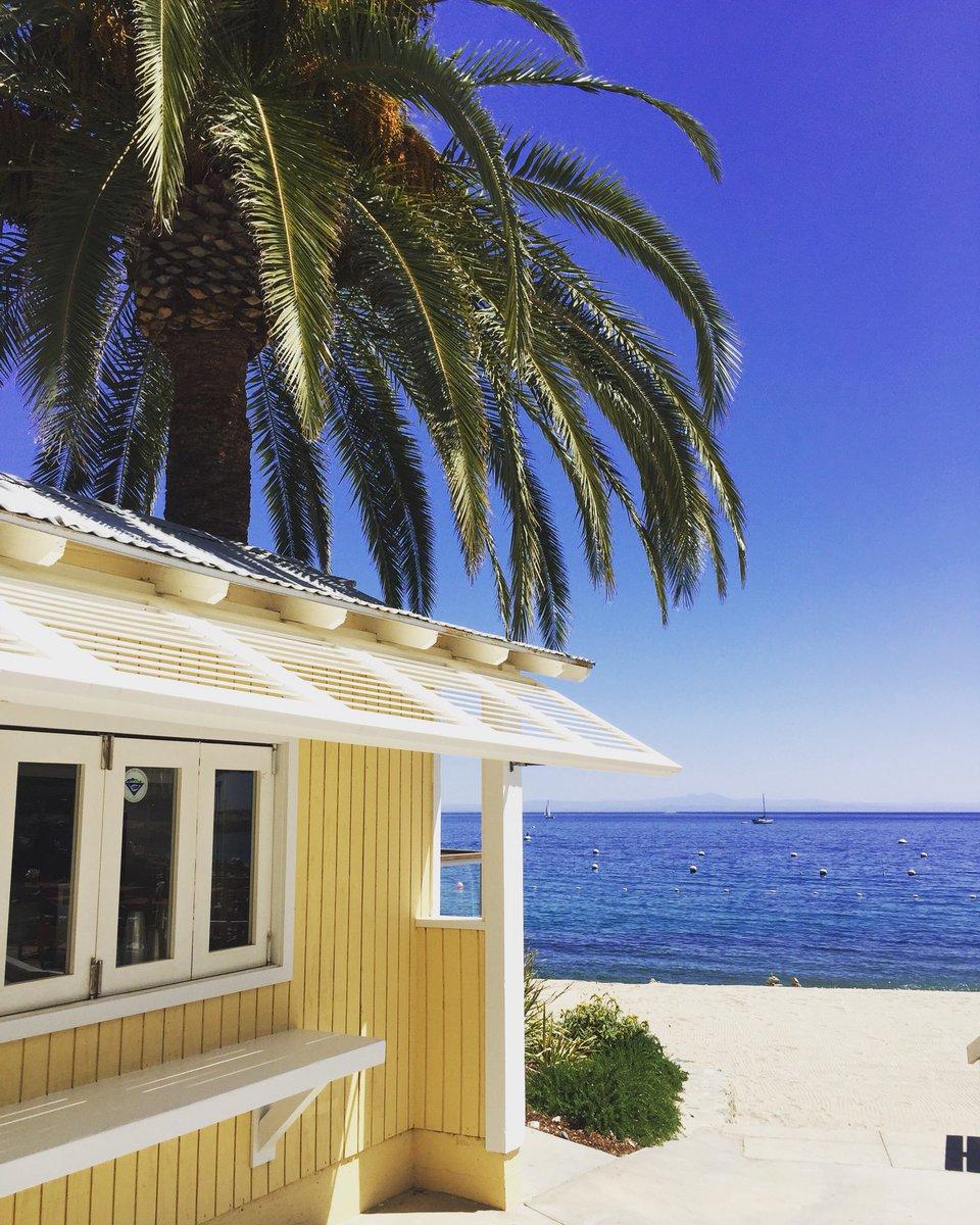 Thanks Catalina ????⚓️????????????❤️????☀️ https://t.co/eHfXnFkmEL