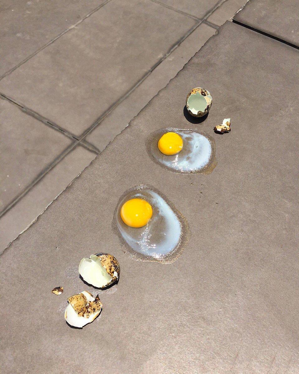 frying eggs on the sidewalk in this 40°C+ heat… WILD.