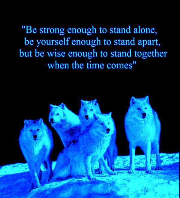 @N8tiveWarri0r @mossdakota1 @toni4zemphotmai @YaSkye1 @RoknRob121 We stand together - #Truth https://t.co/ncCEPrGDKN
