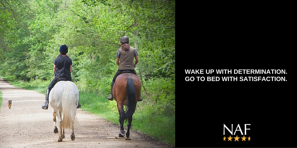 Equestrians are some of the most dedicated people you'll ever meet. Fact. #HorseHour https://t.co/dTyxxDrn8c