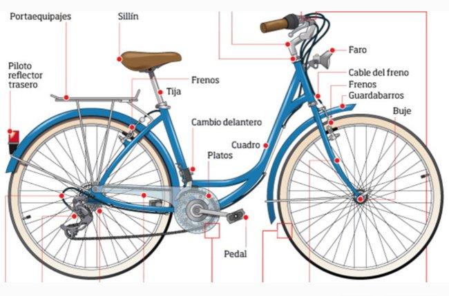 Día Internacional de la Bicicleta: Rutas, ideas y consejos para convertirte en cicloturista https://t.co/gT4Xdv0sdo https://t.co/RKcp8U3yZx