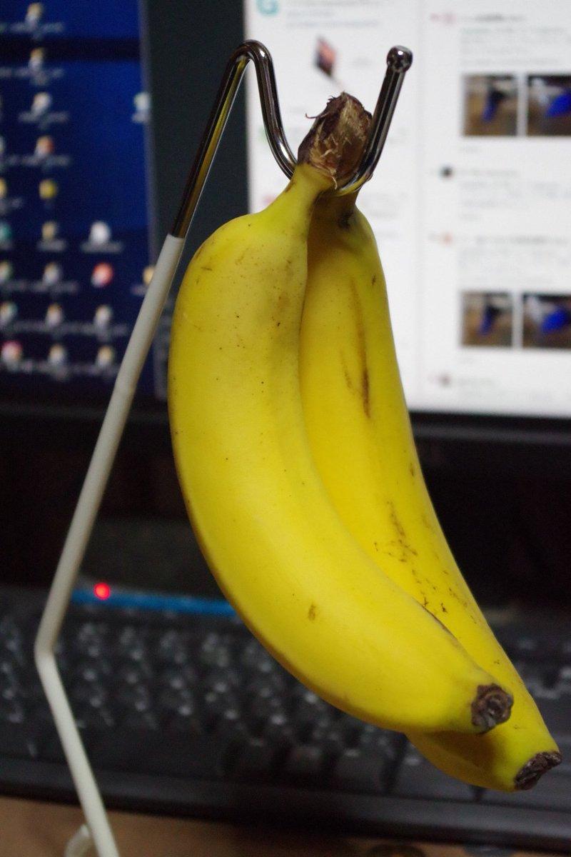正しいバナナスタンドの使用法  インコ(鳥)好きな人のバナナスタンド使用法 https://t.co/ll6mFNGFVe