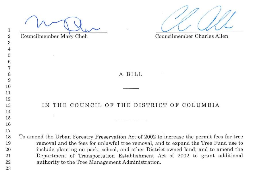The #treebill passed today! We will now retain about 275K more of the District's oldest tress & protect our canopy https://t.co/C3YQdVSn87