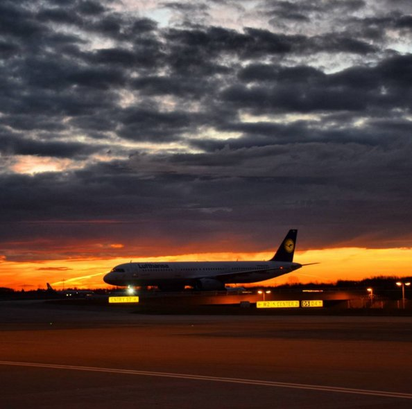 I love watching the sunset while I stretch my wings after a long day! Photo: