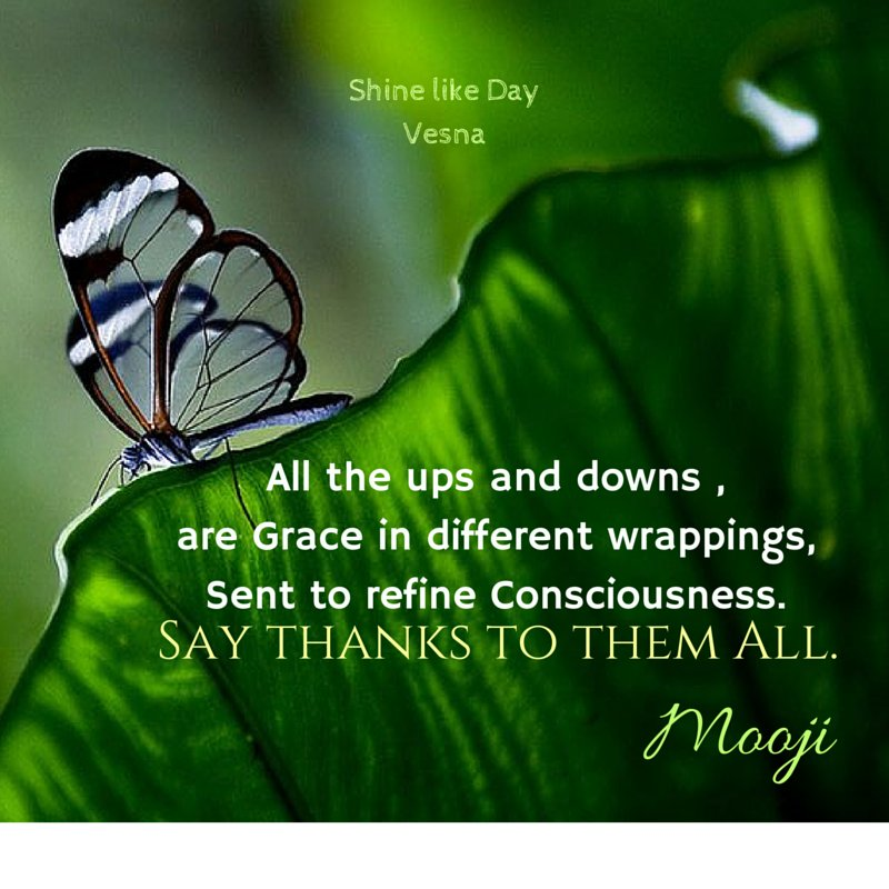 All the ups & downs, are Grace in different wrappings Sent to refine #consciousness Say Thanks to them All‿︵Mooji https://t.co/i4naeFZNH4