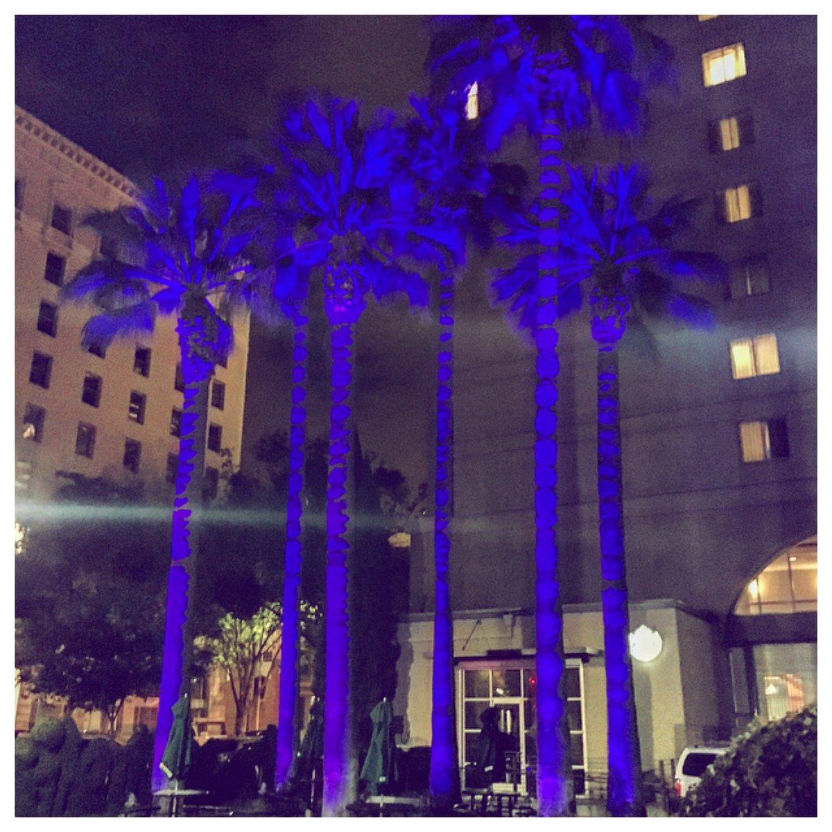 #prince #purplerain RIPprince #downtownsacramento https://t.co/GPTrxkcbRy