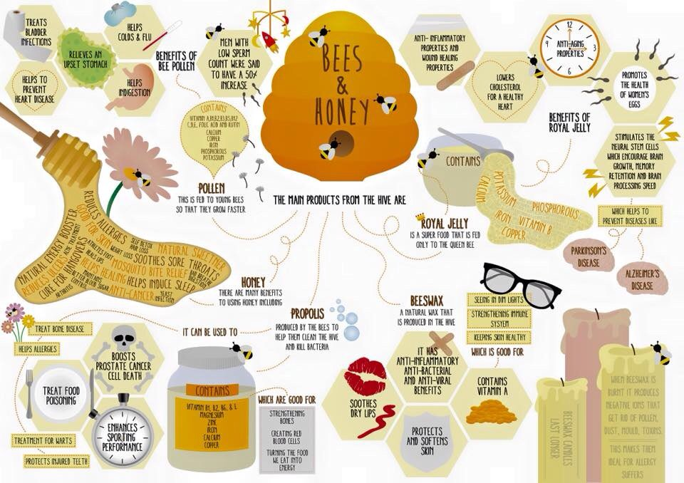 RT @BrayBees: A few interesting facts about bee products to share on Earth day https://t.co/uZpdMF6Ffv