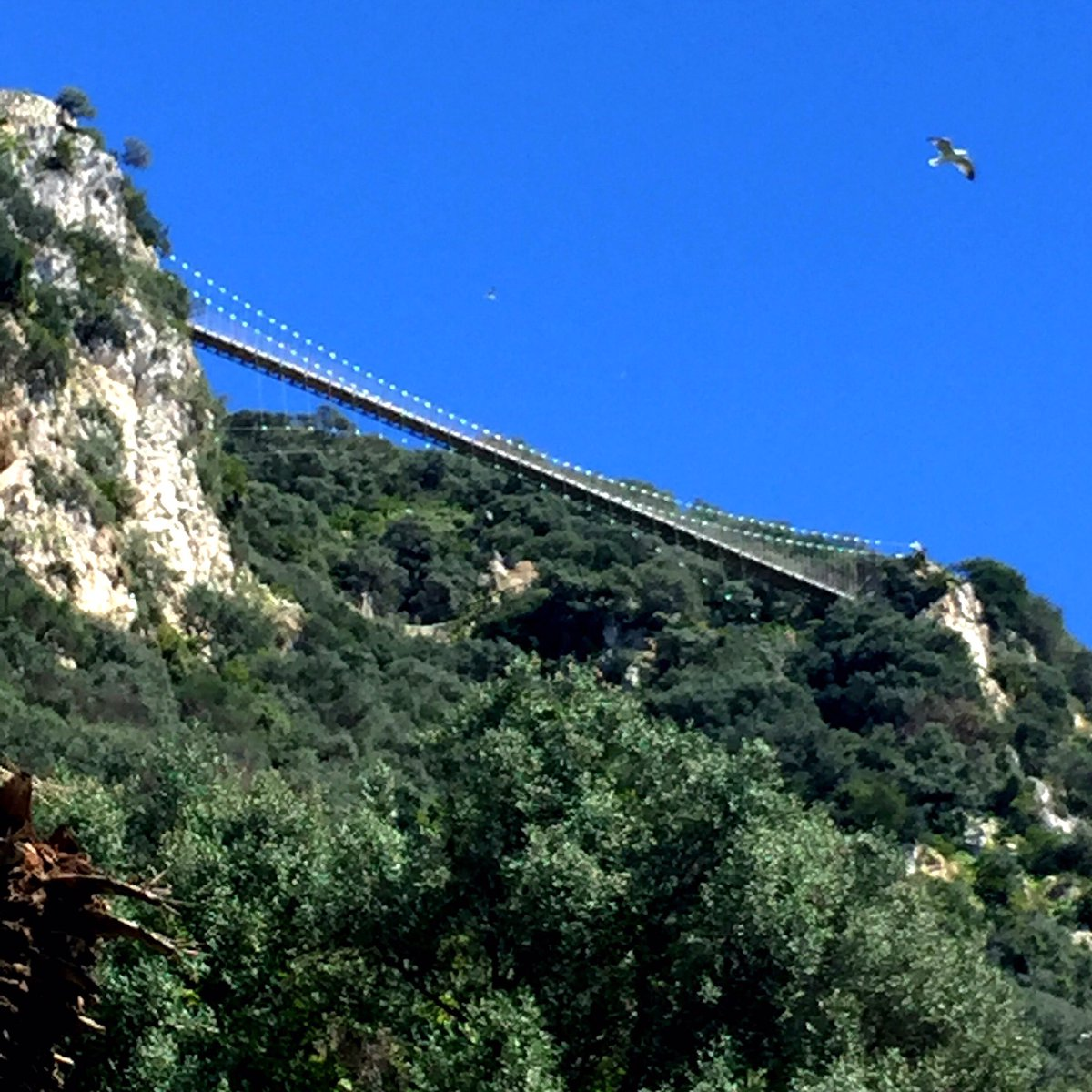Skywalk in #Gibraltar is nearing completion & should be open by summer https://t.co/knGdFbbf51