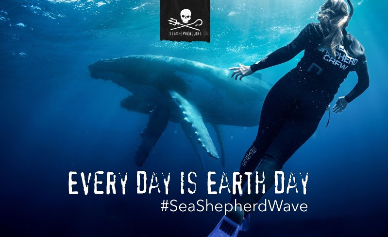 RT @SeaShepherdSSCS: Become a monthly donor and celebrate #EarthDay with us all year long. #SeaShepherdWave https://t.co/OjqeMAWie3 https:/…