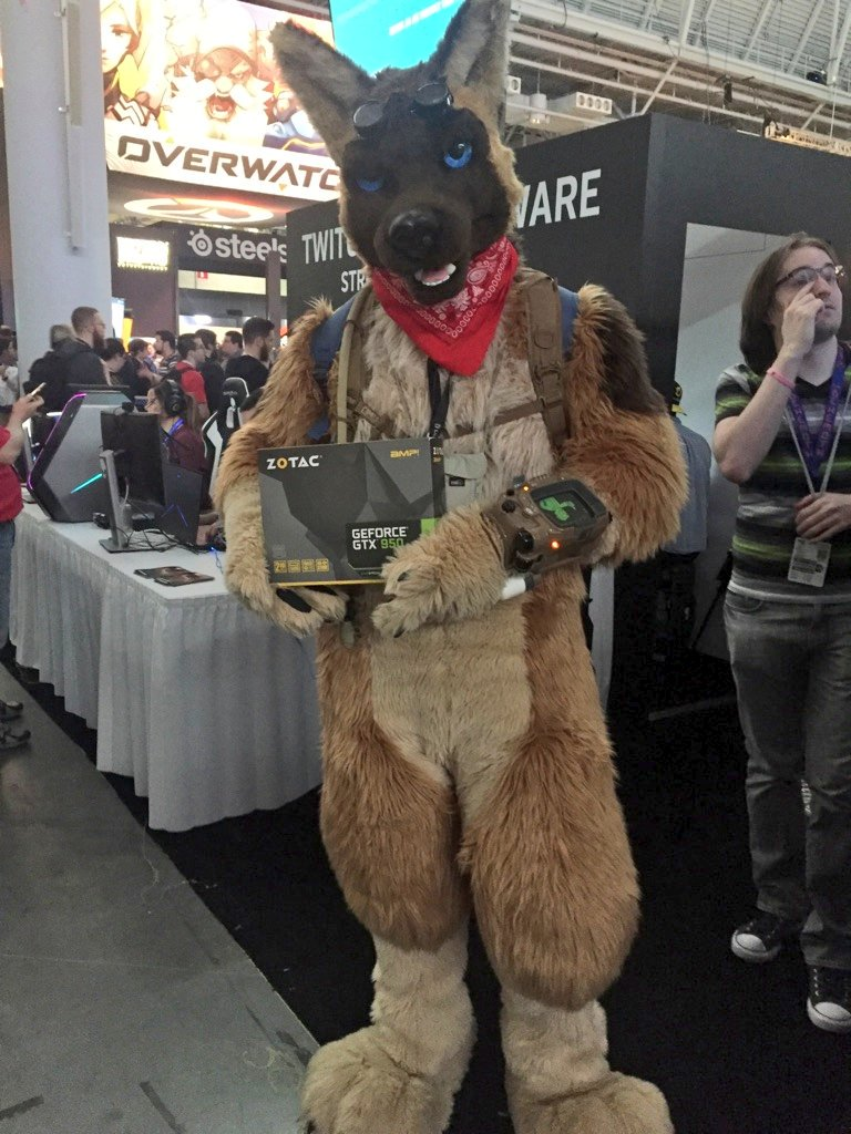 Dogmeat, you're a faithful companion. For that, you're walking out of #PAXEast with a @ZOTAC_USA GTX 950. #Fallout4 https://t.co/X8f24faS1K