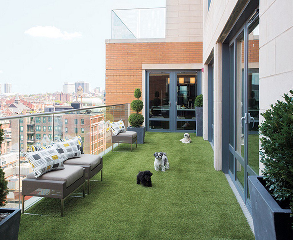 Natural looking artificial grass helps bring this Boston penthouse patio down to earth (and the pooches approve). https://t.co/t0l4S3vzt7