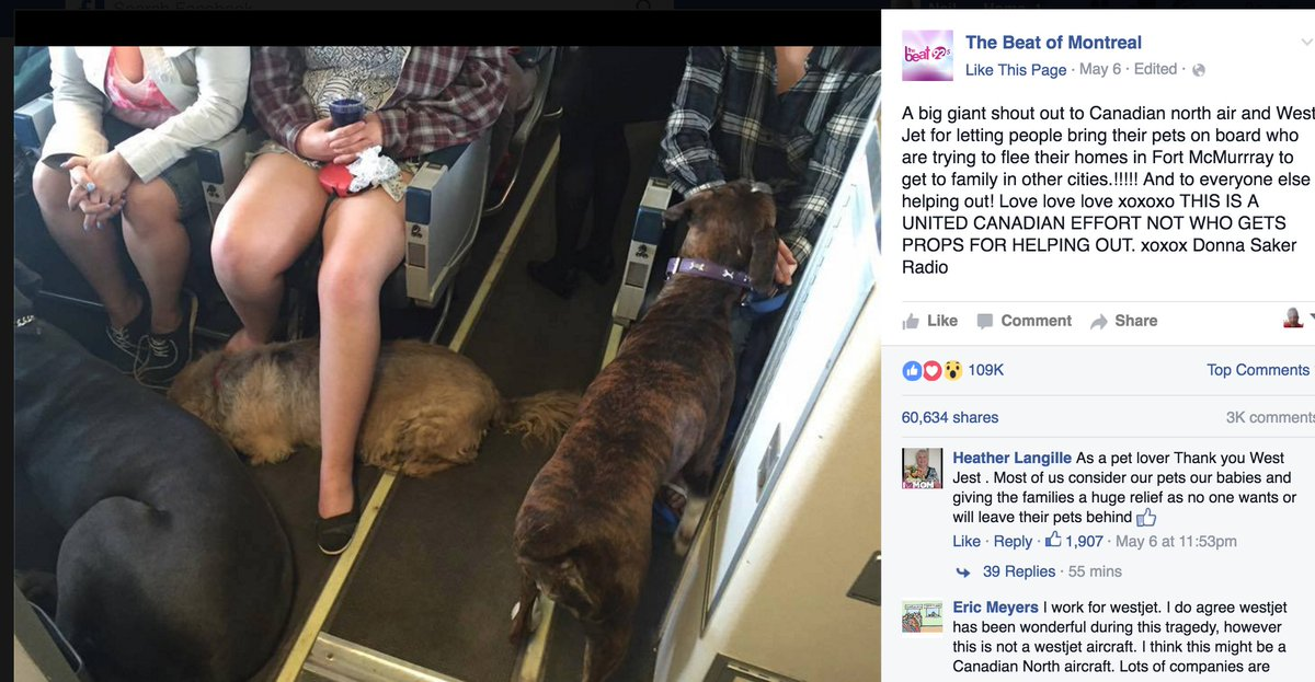 Canadian airlines letting people fleeing Fort McMurray take their dogs on board... https://t.co/nFz3DICfTg