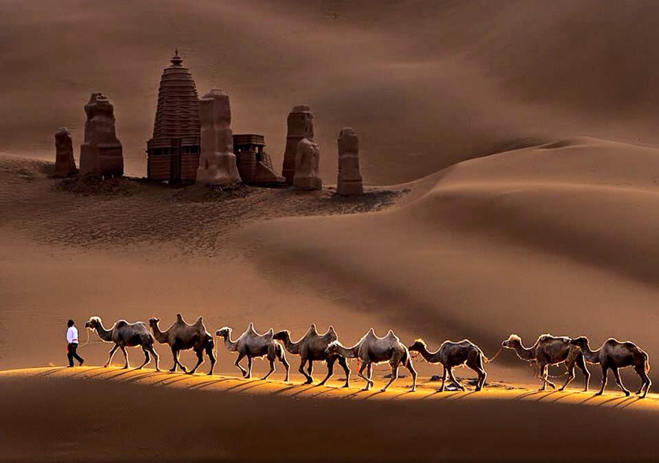 Castle and Camels in Kumtag Desert, China | Photography by ©Mei Xu https://t.co/RCgkgl06C4