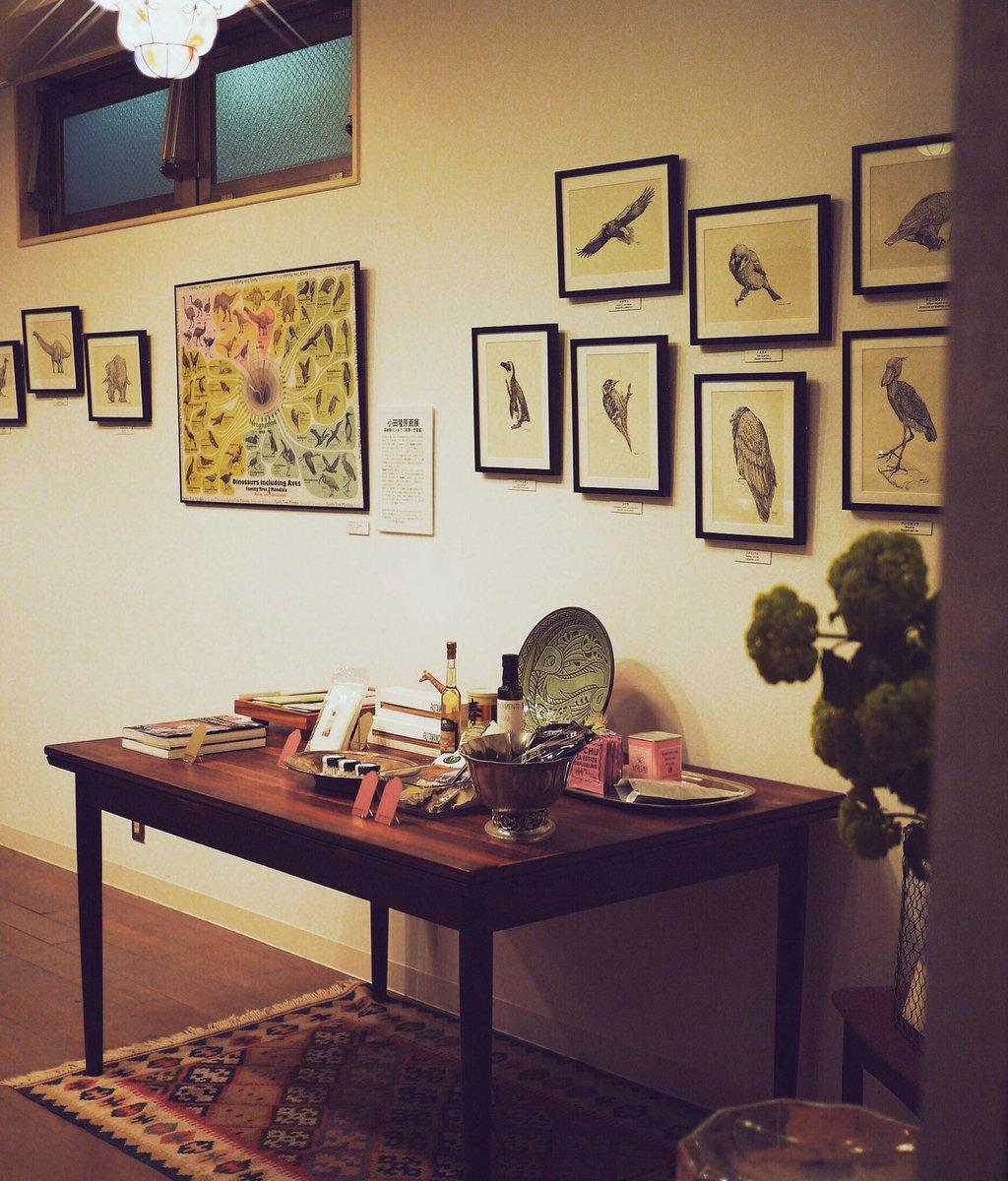 こつこつ手づくりKIWI-store。 小田隆さんの鳥類原画に囲まれて極上調味料、食材、お菓子も選べます。明後日4/29の11時半から3日間開店。みんな来てね(^-^)/ https://t.co/ozDUVUYp4z #小田隆 https://t.co/YdXazoehX0