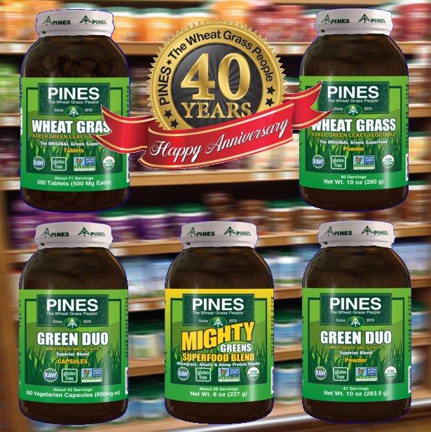 PinesWheatGrass photo