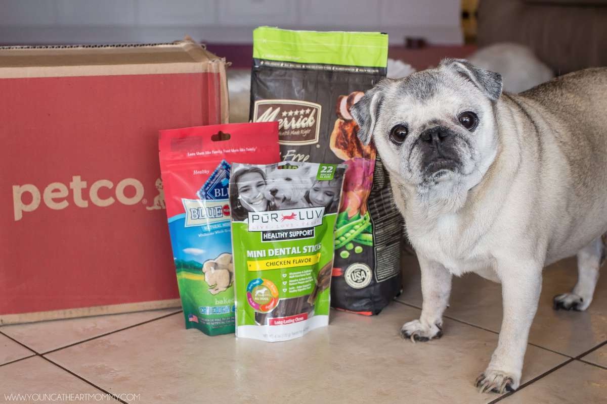 Learn about @Petco Repeat Delivery Service &  $100 Amazon GC #Giveaway! https://t.co/yrtN41NMWq #PetcoDelivers #ad https://t.co/OtDCyxOaW4