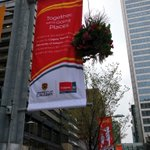 The @UCalgary have put up lovely new banners on 7th ave in honor of their 50th anniversary! #yyc https://t.co/3UmInONnuR