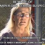Somethings very wrong if #CSIS can brand a harmless granny a terrorist to protect oil interests #cdnpoli #C51 https://t.co/gdmpqboxam