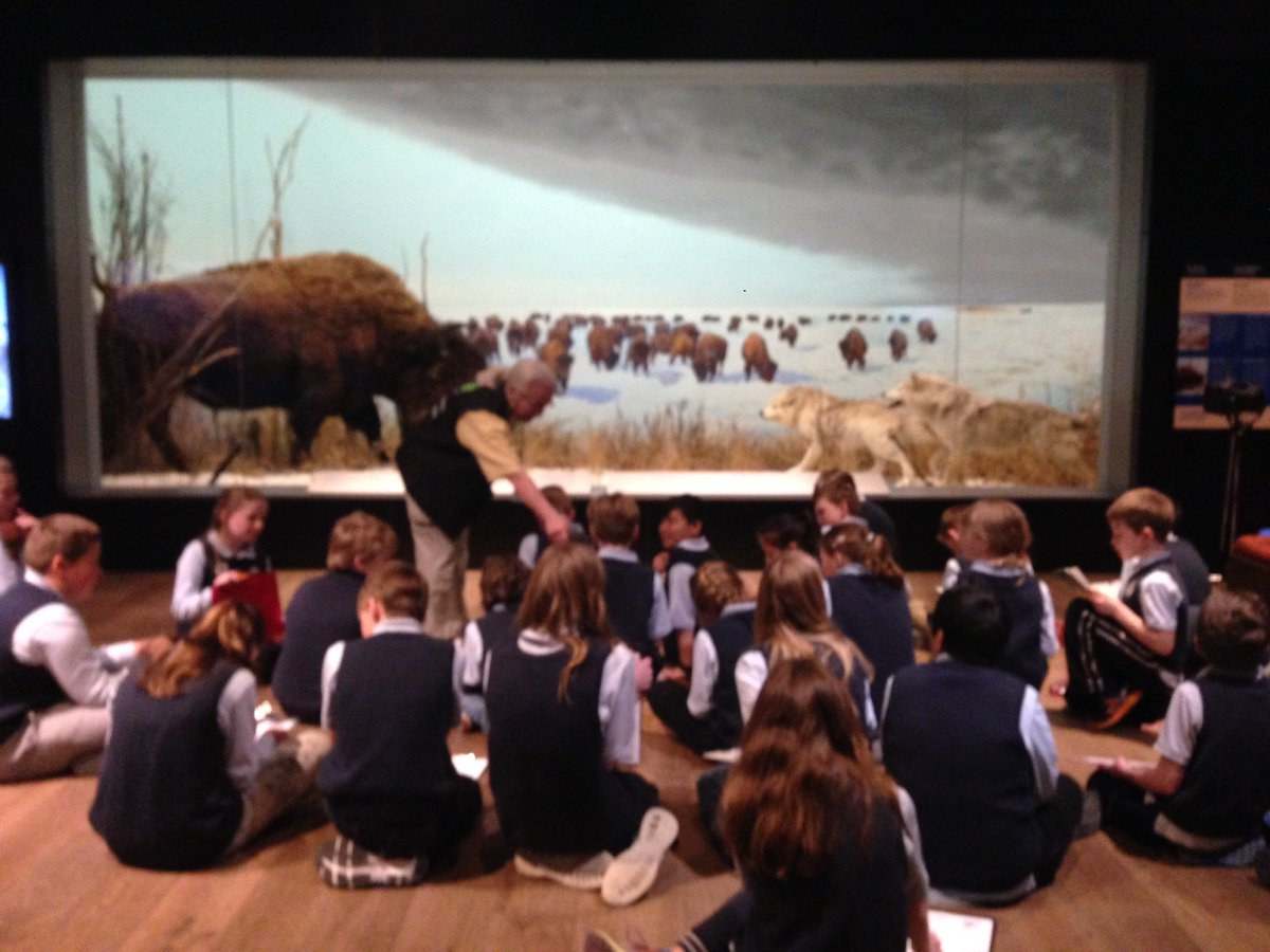 test Twitter Media - Enjoying our fabulous trip learning about habitats and animal adaptations at the Museum of Nature#museum of nature https://t.co/l0U49Y5Un5