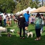 PAWSAPALOOZA Dog Festival #LA May 1 | 9a-4p @ West Hollywood Park *FREE Event https://t.co/hdglWkyt2a #LosAngeles https://t.co/YpFopJ18vk