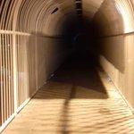No es película de terror.Es el puente de la Tulum x el ADO. La publicidad lo oscurece #cuidado @VivoEnCancun https://t.co/2j8SQLJN2k