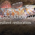 Restoration Day 2016 – become a protector of our region's forests, rivers, coasts and parks https://t.co/5x66AvKSSl https://t.co/2nRwpqLnB4
