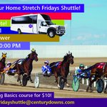 Our Home Stretch Shuttle Friday is back! Get a round-trip and Betting Basics for just $10. Reserve your seats! #yyc https://t.co/l94TtZxJaY