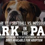 Join us this Sunday at 3:30pm. DogPound Printing presents Bark in the Park! Bring your dog and meet adoptable dogs! https://t.co/K3Dr3yyAEU