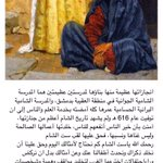 من هي ست الشام ؟ https://t.co/1lnptrAkBh