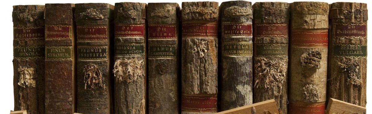ボロボロになった本かと思ったら違った。背表紙のラベルに書かれた木、そのものの樹皮でカバーが作られてて開くとその木の葉や種が入ってる。ドイツのグッテンベルク城にある18世紀の木でできた木の図書館。いいなあ! https://t.co/RbESP8WYCR