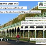 #brighton #biosphere #unesco the most important #livingwall of #Nature #Conservation in the #uk #biodiversity https://t.co/sZkOTo9YIZ