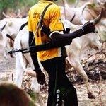 "Senate Orders Service Chiefs To Probe Enugu Killing https://t.co/mIOyx43Pjz https://t.co/bIQVQFv1yQ"""