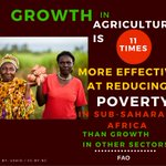 The role of #agriculture in economic development in #Kenya cant be overstated #AgribusinessTalk254 https://t.co/SXkXYUIaXK