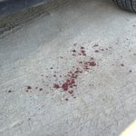 Spots of blood dot the ground and front steps outside The Pump https://t.co/j5iMPYfd2z