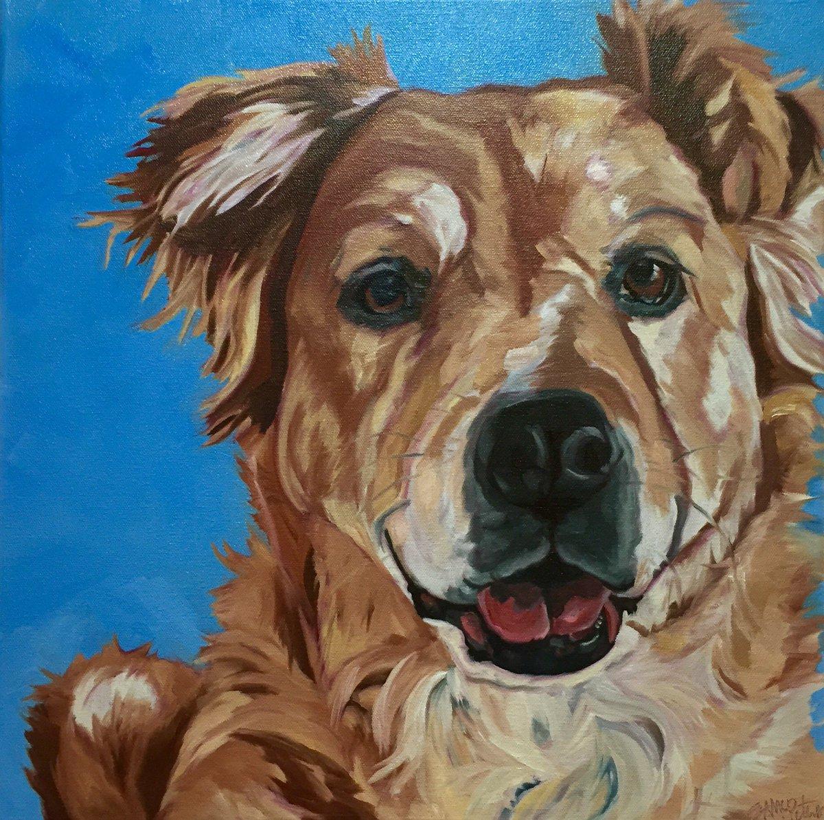 On the easel today. A beautiful #goldenretriever #barkingdogcreationsstudio #100daysofdogart #100daysproject #dogart https://t.co/f6eCLNbRiJ