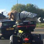 mashable: Motorbike-riding dog sparks police investigation https://t.co/dG60WJdNzK https://t.co/RC8mI9997n