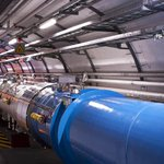 A weasel has shut down the Large Hadron Collider: https://t.co/pu2rgagNTZ https://t.co/ry90NK2G9t