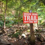 The Grouse Grind Opens for the 2016 Season this Saturday   https://t.co/3XjjjzM9QL   cc: @ejaneweiss @grousemountain https://t.co/UH8tNaNeOy