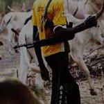 Stop labelling Fulanis as criminals – Northern Govs https://t.co/GytvjhnRlk https://t.co/rH5RMDVo1B