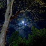حتى القمر ..  ما كان ليكونَ رائعاً  لو لم يحاصره كل هذا الظلام ! https://t.co/IIr4uLuxtR